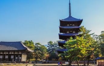 Nara, Chrám Kófukudži