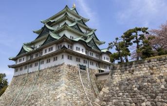 Nagojský hrad s kvetoucí sakurou