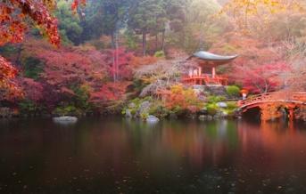 Zahrady Sankeien
