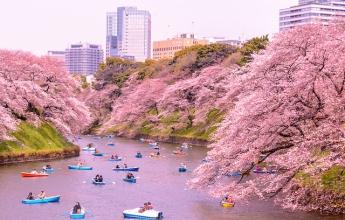 Japonsko na jaře