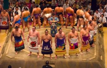 Zápanníci sumó