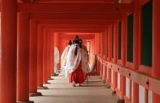 Japonské svátky