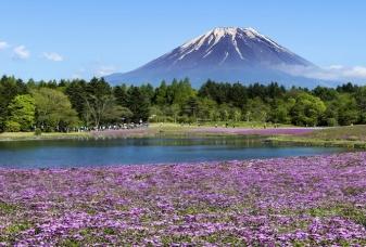 Japonská příroda