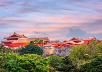 hrad Shuri