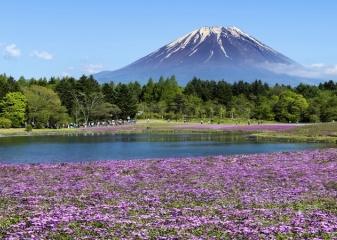 Fudži na jaře