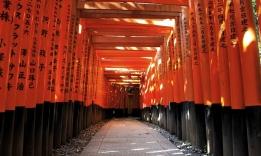 Tunel Fušimi Inari Taiša, Kjóto