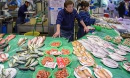 Největší rybí trh světa Cukidži